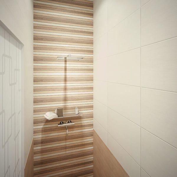 Дизайн душевой в частном доме